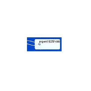 ETIQ.7 ARGENT 925 x500